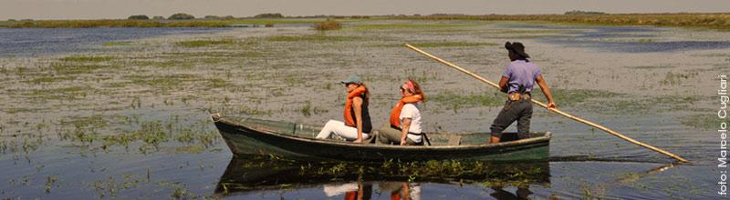 Proyecto Iberá es una orgnización que promueve la conservación del segundo humedal más grande del mundo