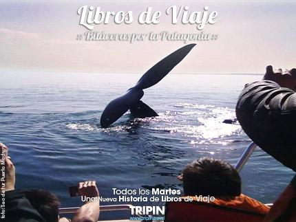 Libros de Viaje, en Puerto Madryn y las ballenas del Doradillo