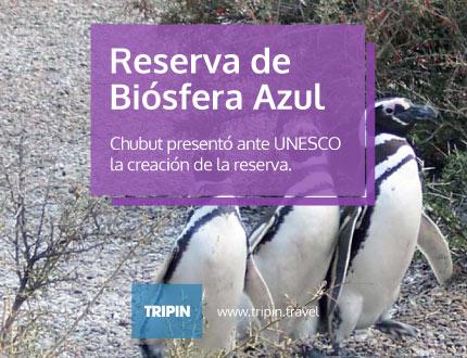 Chubut presentó ante unesco la creación de la Reserva de Biósfera Azul