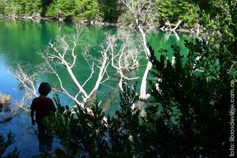 El imponente rio Arrayanes en Chubut, uno de los lugares magicos del PN Los Alerces