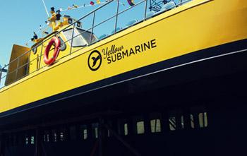 La novedad de la temporada de ballenas 2014, el Yellow Submarine
