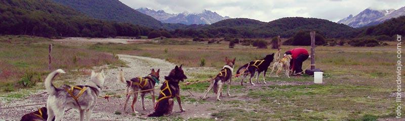 La familia que viaja por la Patagonia en Valle de Lobos, Ushuaia