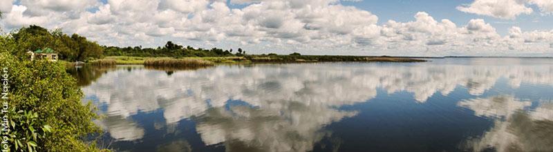 Los esteros del iberá, el segundo humedal más grande del mundo bajo una constante amenaza