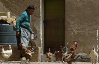El tranquilo ritmo de Antofalla en un #ViajeXCatamarca por Henar Riegas