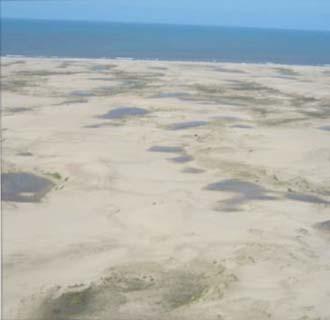 Reserva Dunícula Faro Querandí