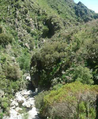 Cascada Golondrinas
