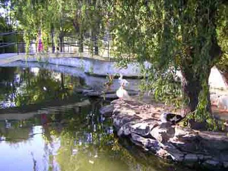 Lagunas de los Patos