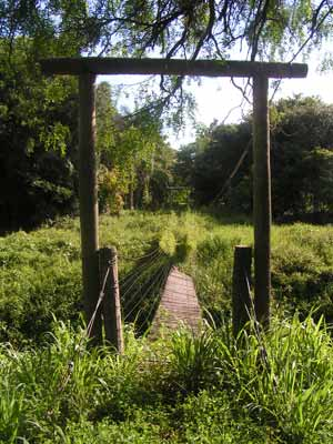 Reserva ecologica pai curuzú
