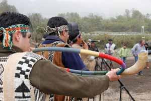 Ruta Mapuche