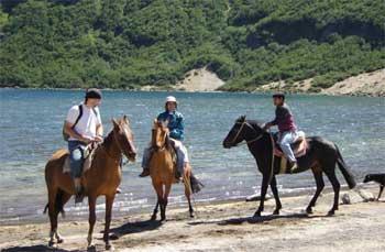 Cabalgatas en Pehuenia