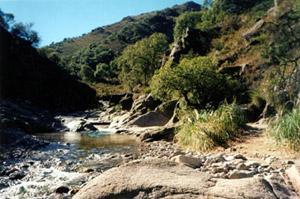 Arroyos Los Molles