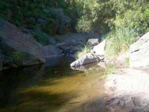 Rio Las Balsas