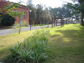 Parque Guermes en Rio Hondo